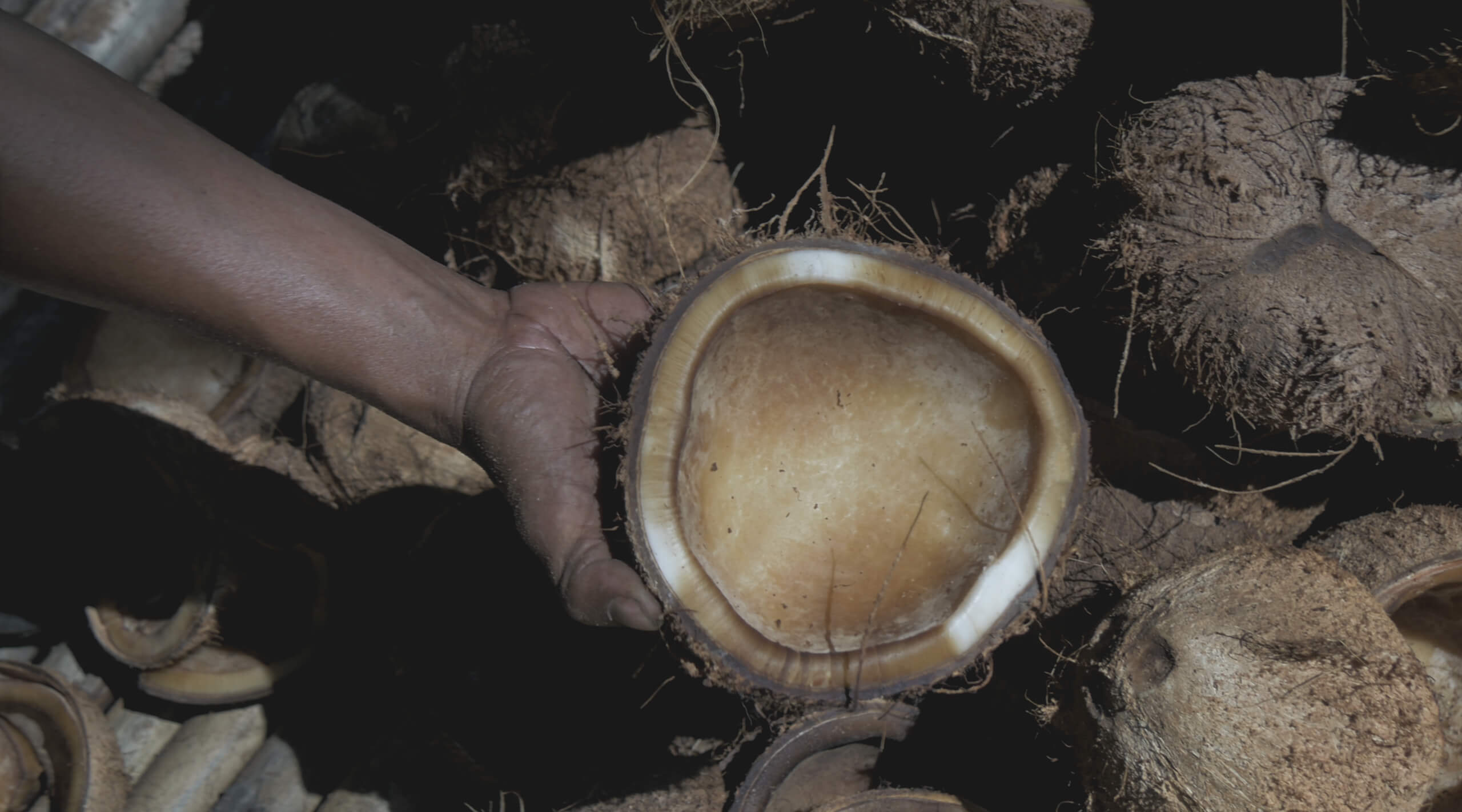 What is Copra Used For? The Industrialized Byproduct of Coconut