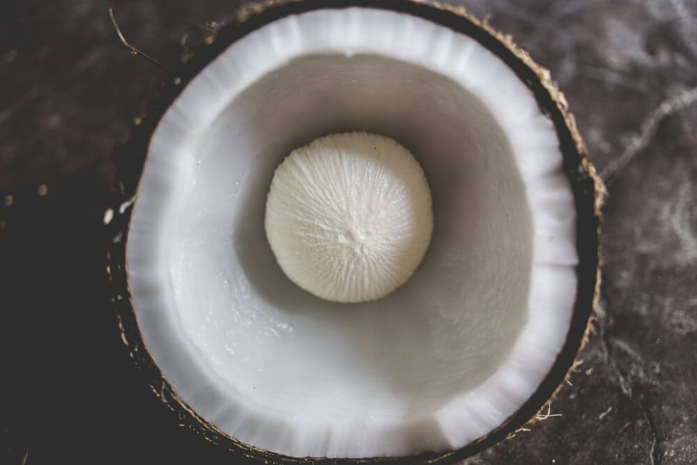 is coconut oil trans fat, nut or a fruit?