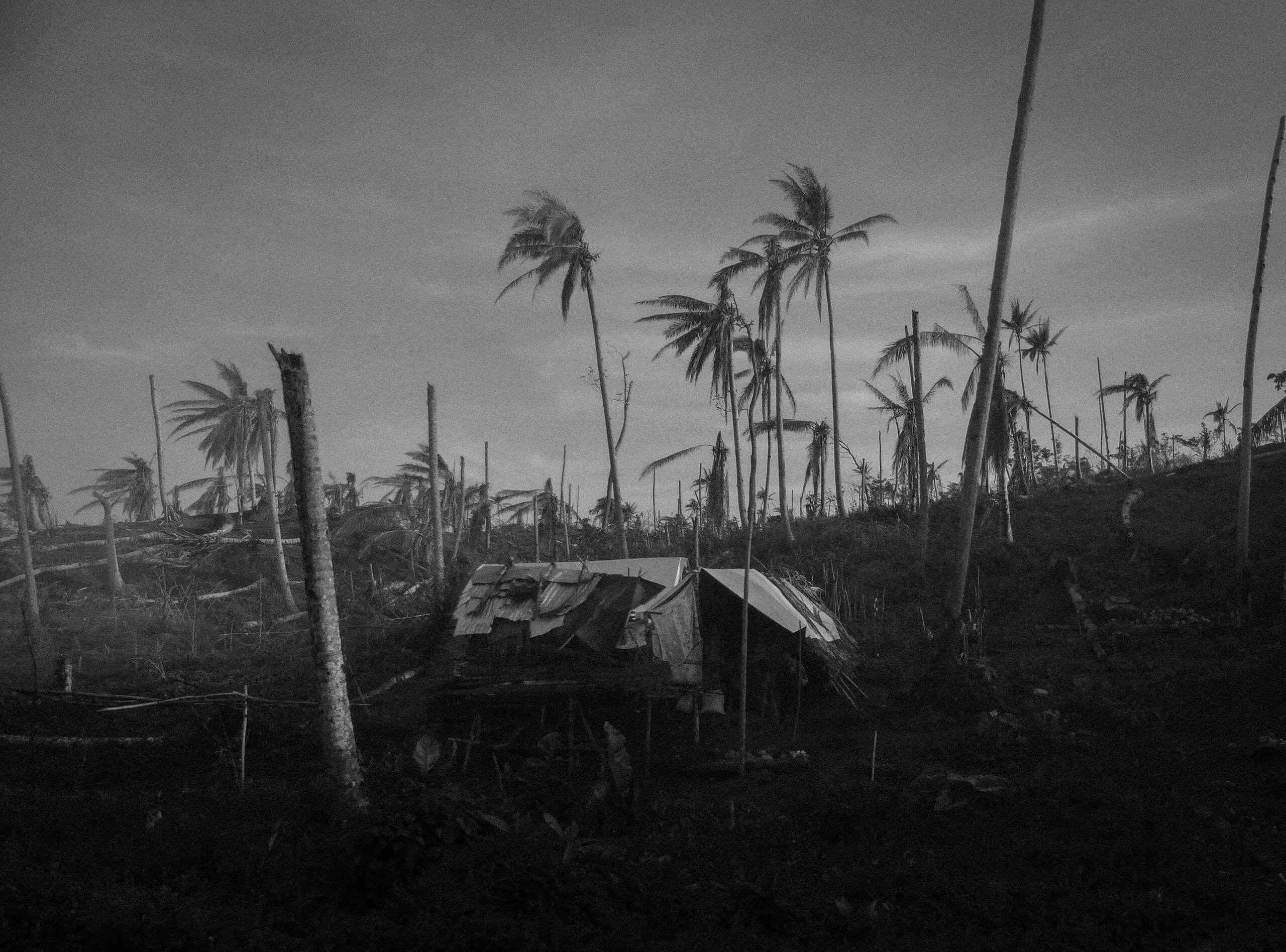 Aftermath of typhoon ruby in tacloban